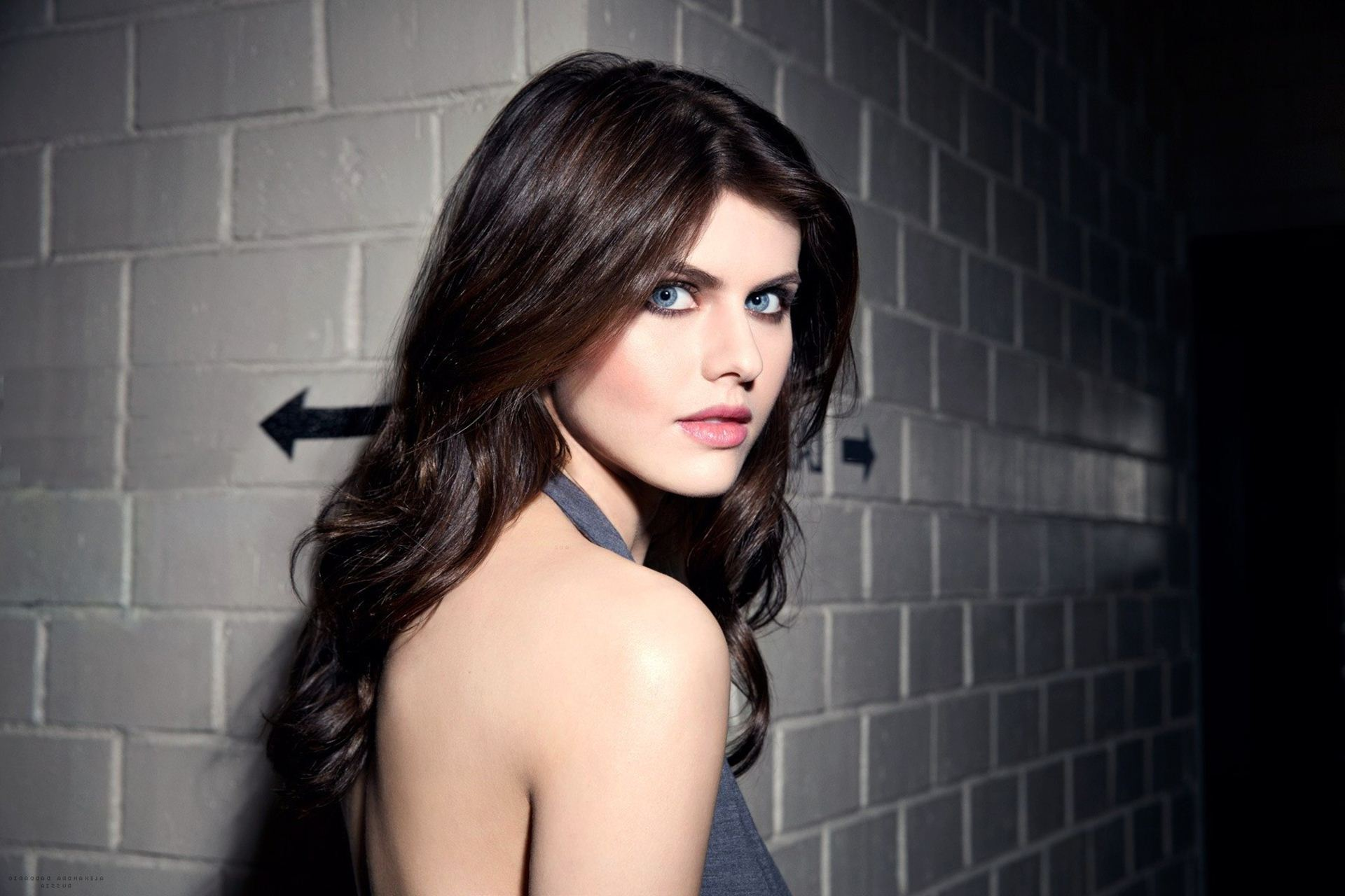 Alexandra Daddario HD Wallpapers For Desktop Download