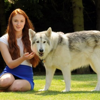 Sophie Turner wallpapers desktop