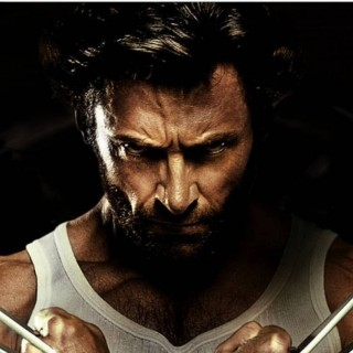 Wolverine free wallpapers