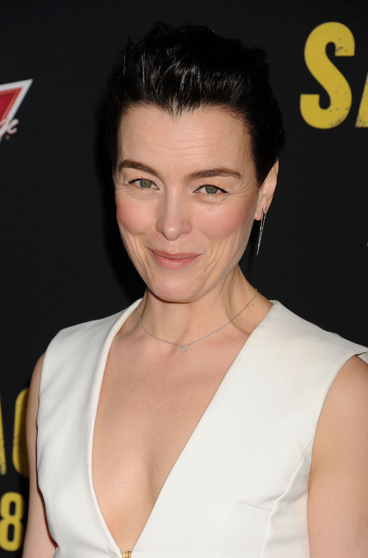 Olivia Williams nudes (74 gallery), hot Boobs, Instagram, panties 2020