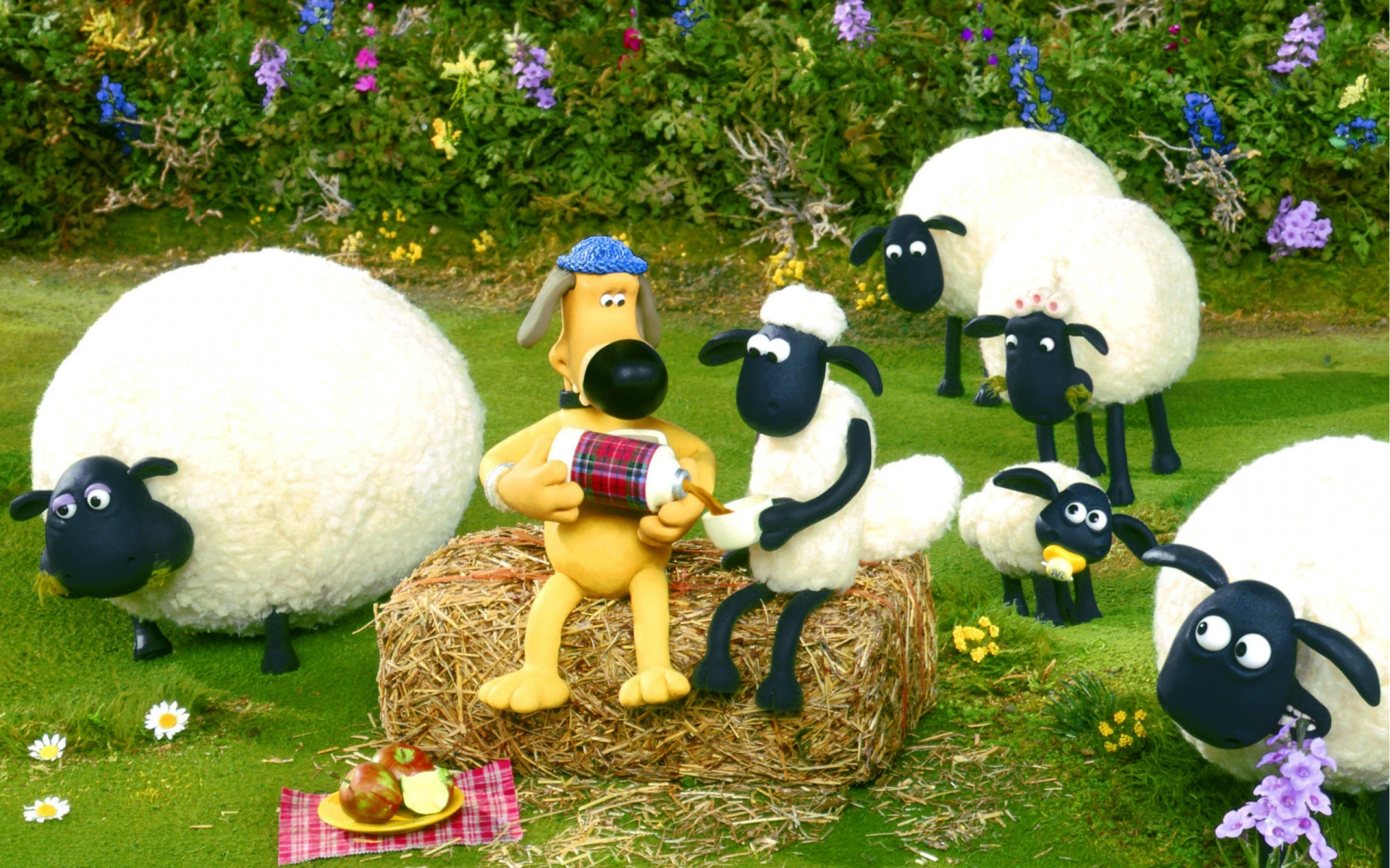 What Is The Name Of Shaun The Sheep Dog