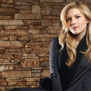 Katheryn Winnick new