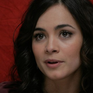 Alice Braga background