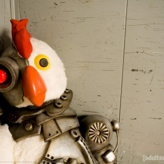 Robot Chicken photos
