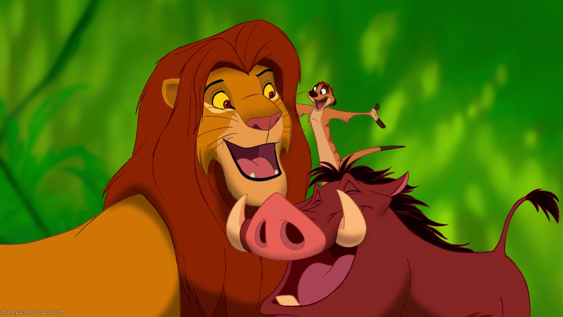timon and pumba images