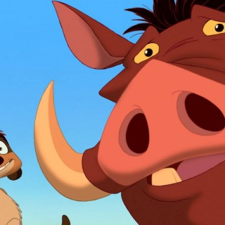 Timon And Pumbaa pictures