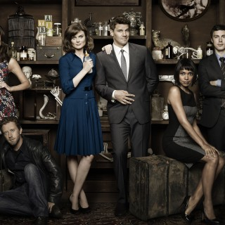 Bones Tv Series background