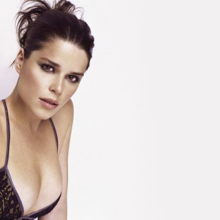 Neve Campbell new