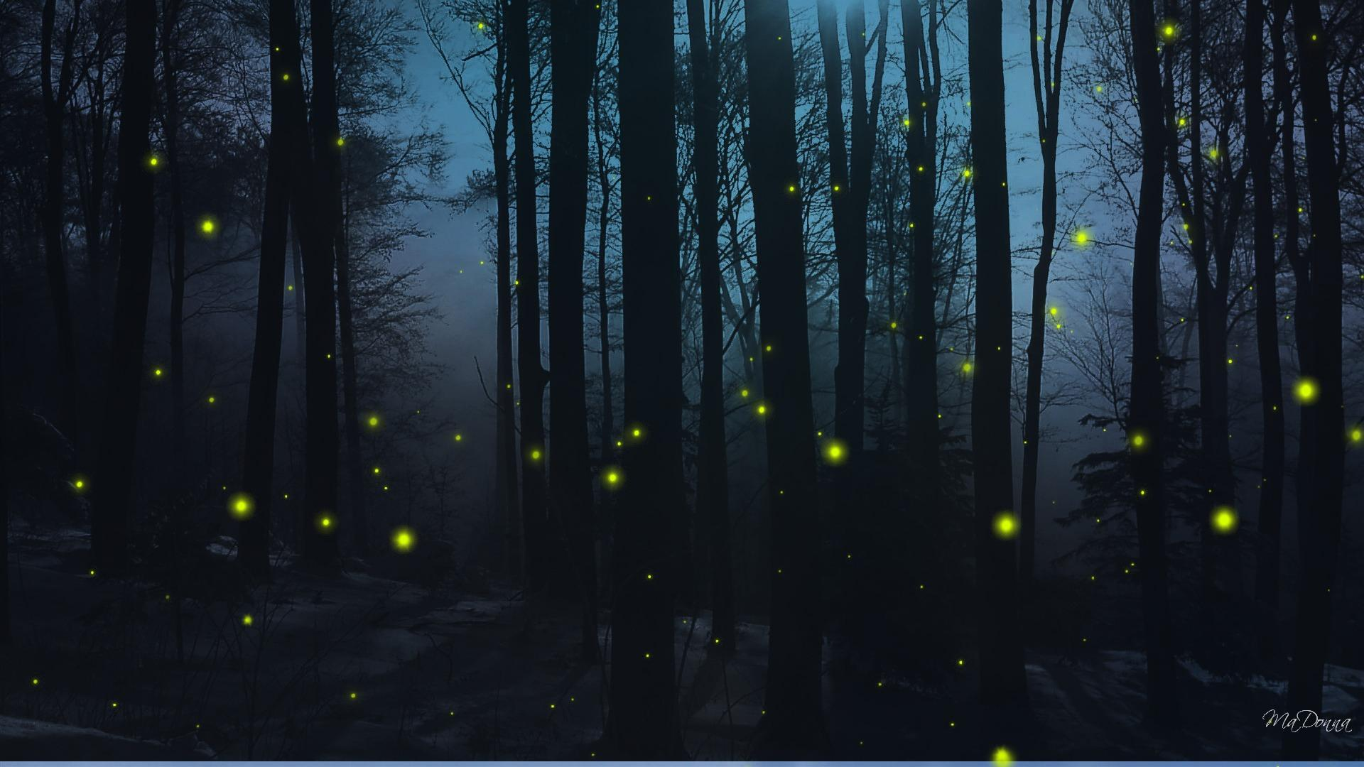 firefly hd wallpapers for desktop download
