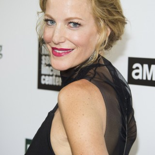 Anna Gunn high definition wallpapers