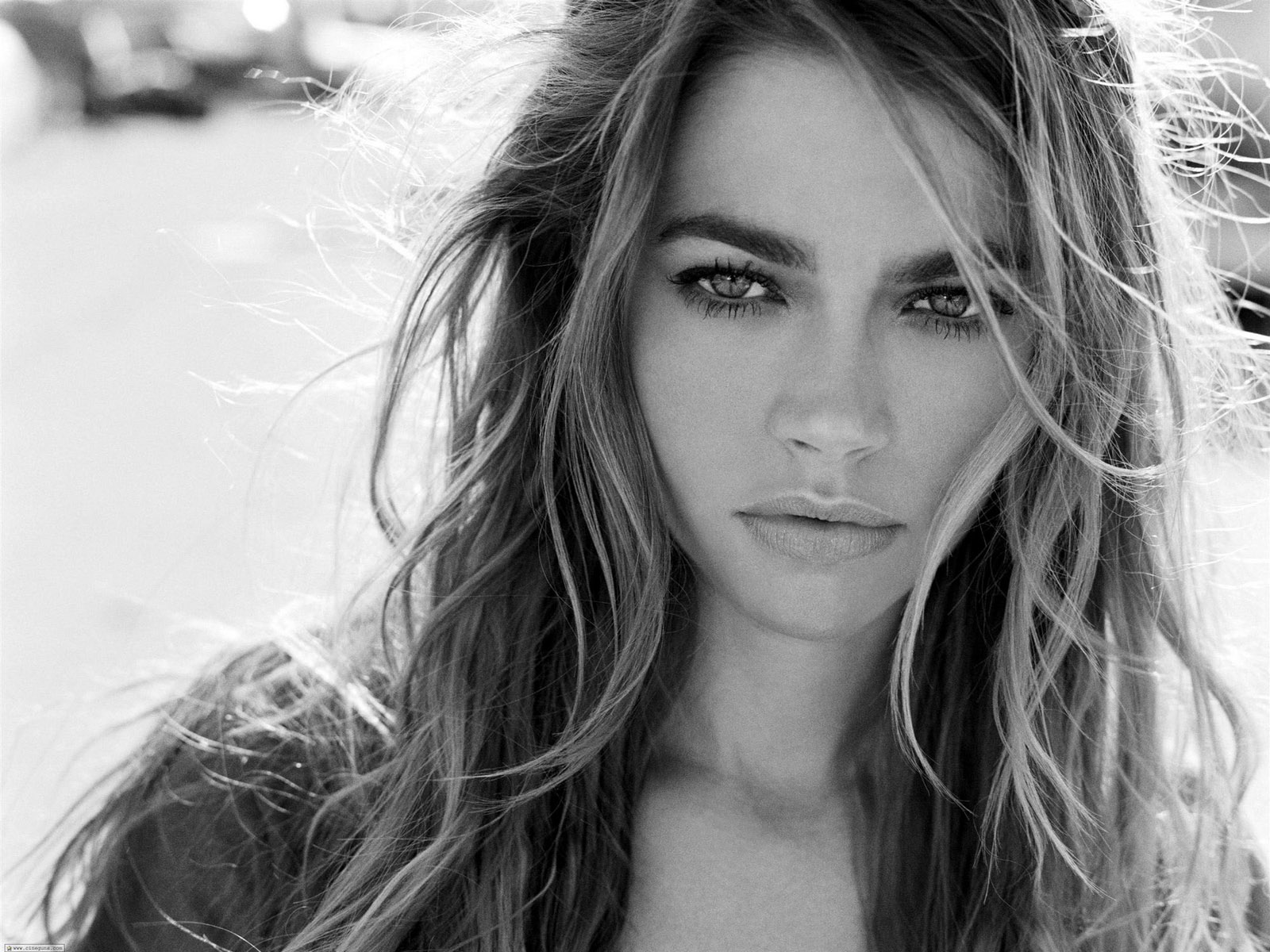 Denise Richards HD Wallpapers