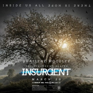Insurgent download wallpapers