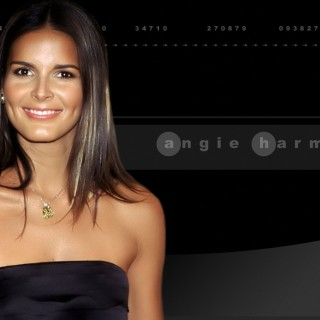 Angie Harmon high definition wallpapers