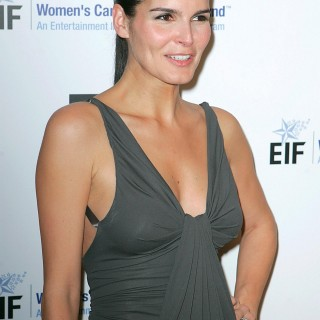Angie Harmon high quality wallpapers