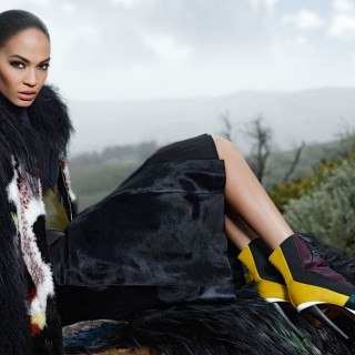 Joan Smalls free wallpapers