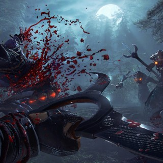 Shadow Warrior 2 widescreen