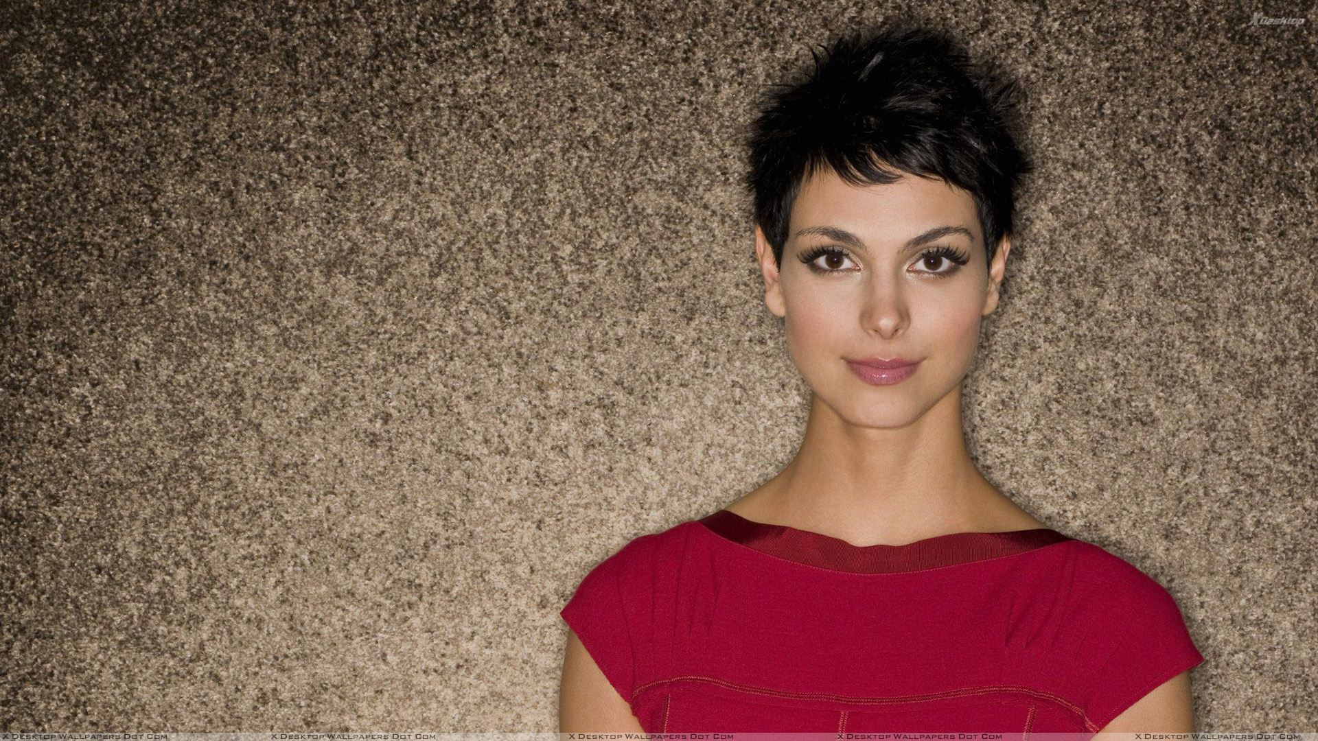 Morena Baccarin HD Wallpapers
