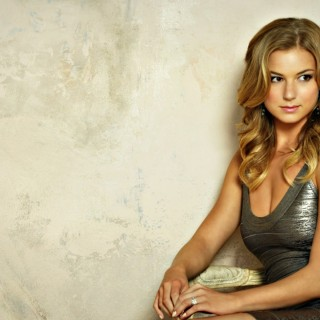 Emily Vancamp images
