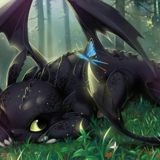 How To Train Your Dragon pictures