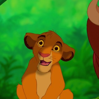 Timon And Pumbaa wallpapers widescreen