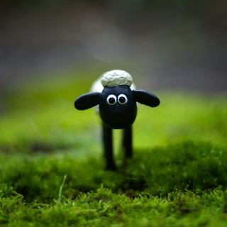Shaun The Sheep pictures