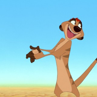 Timon And Pumbaa high quality wallpapers