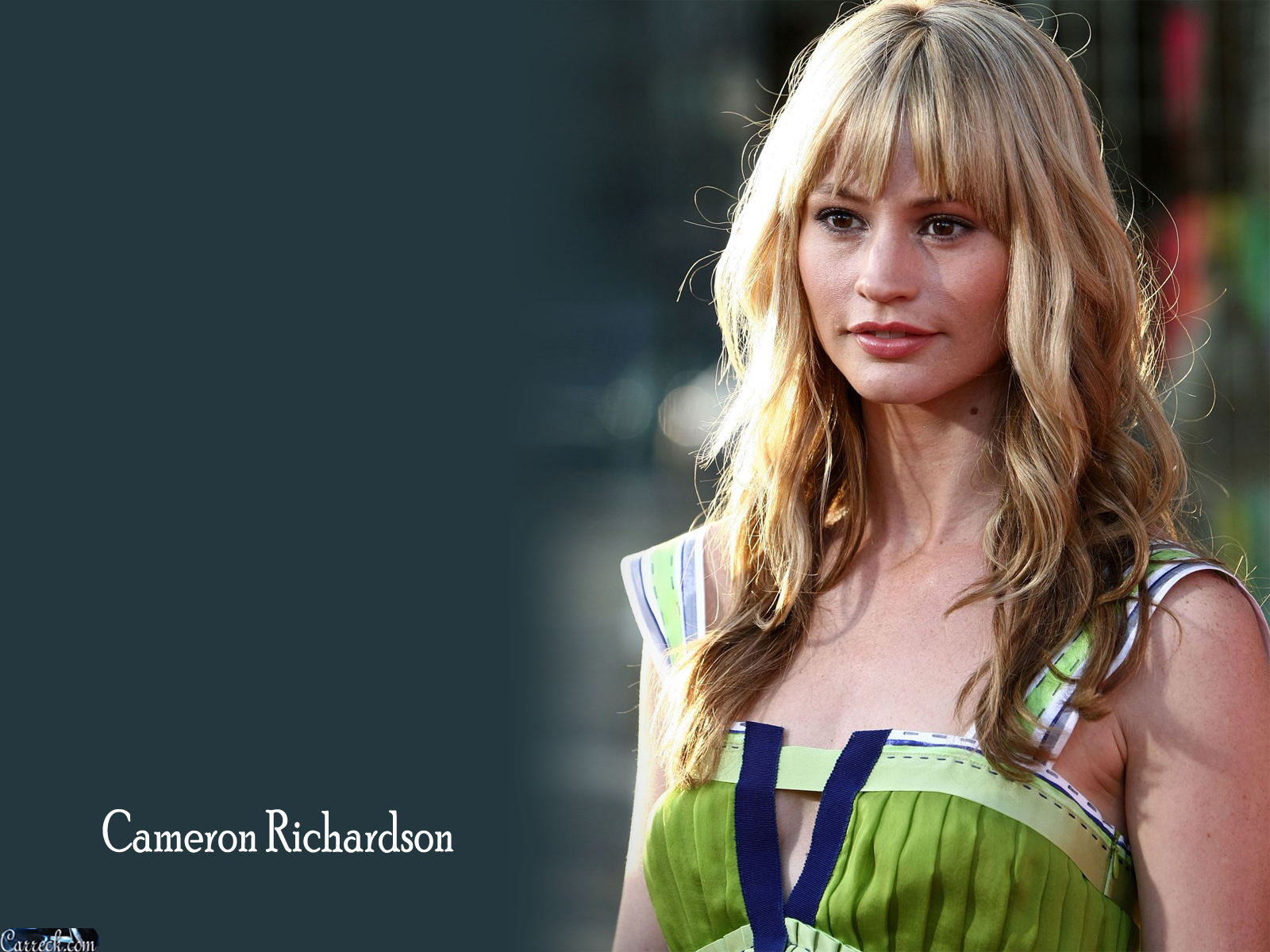 Cameron Richardson Movies And Tv Shows cameron richardson hd wallpapers for desktop download
