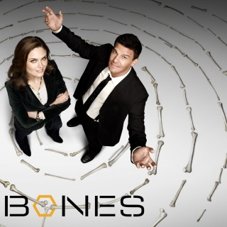 Bones Tv Series free wallpapers