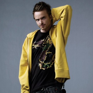 Aaron Paul free wallpapers