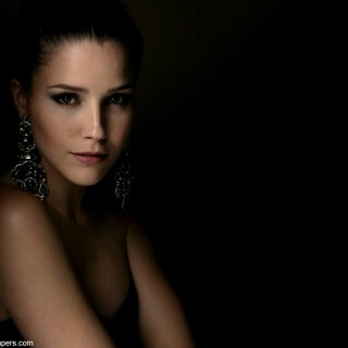 Sophia Bush new