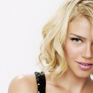 Adrianne Palicki download wallpapers