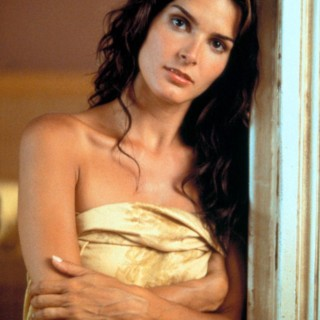 Angie Harmon high resolution wallpapers