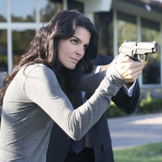 Angie Harmon wallpapers desktop