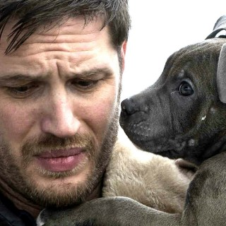 Tom Hardy hd wallpapers