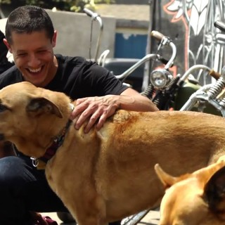 Theo Rossi hd