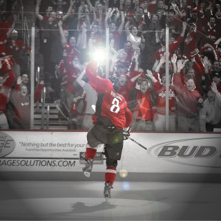 Alex Ovechkin wallpapers