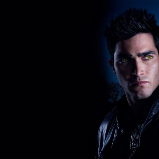 Tyler Hoechlin free wallpapers